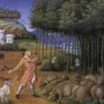 Il bosco medievale