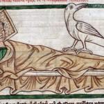 L'uccello che libera dal male