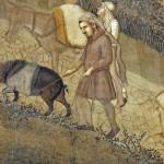 I maiali con un santo in paradiso