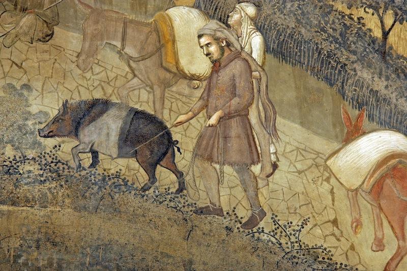 Cinta senese, particolare degli 'Effetti del Buongoverno in campagna' di Ambrogio Lorenzetti