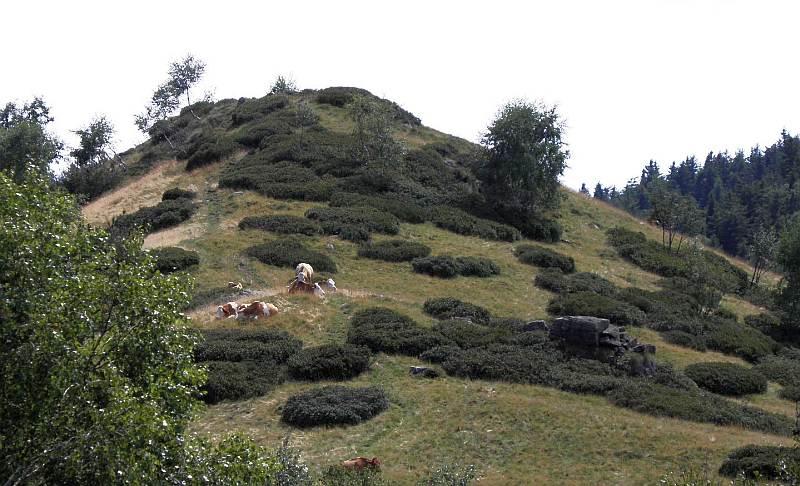 Una immagine del Monte Rubello