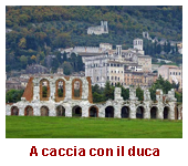 A-CACCIA-CON-IL-DUCA