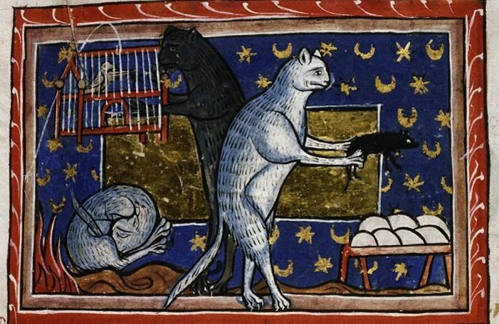 animali festival del medioevo